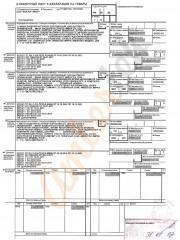 Государственная таможенная декларация - Ambertek - ГТД ФТС России